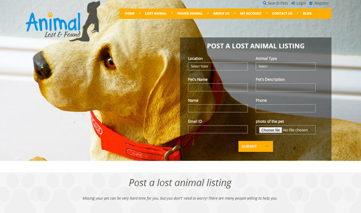 Animal Lost and Found